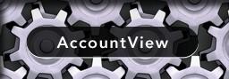 AccountView ERP Integration